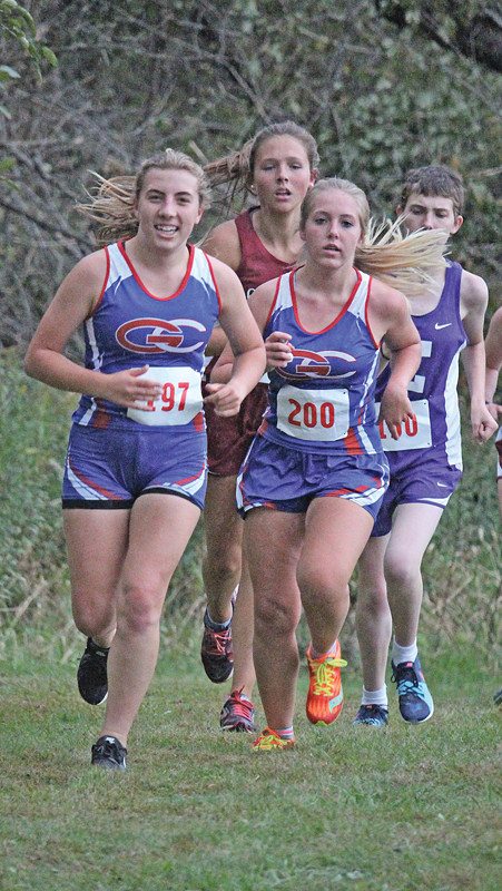 Boyceville Glenwood City Cross Country Teams Run At Spring Valley