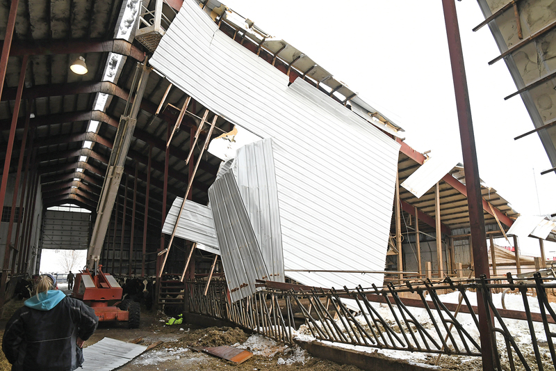 HEAVY DAMAGE — Looking from inside the barn at Clark Ridge Farm, the damaged caused by a heavy snow load to a significant portion of the roof is clearly evident. —photo by Shawn DeWitt