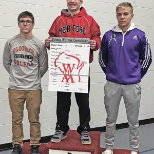 RETURNS TO STATE — After missing last year's state wrestling championship, Colfax junior Mitchel Harmon, left, earned his second state berth in three years with a second-place showing at 138 pounds at the WIAA Division 2 Individual Wrestling Sectional in Neillsville last Saturday, February 16. —photo submitted
