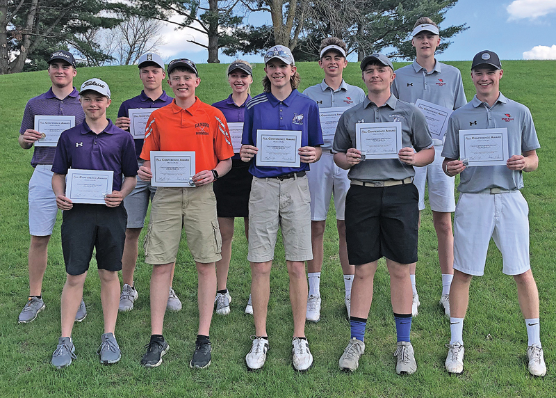 2019 DSC All-Conf Golf