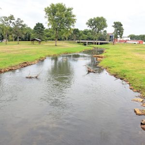 Tiffany Creek Restoration
