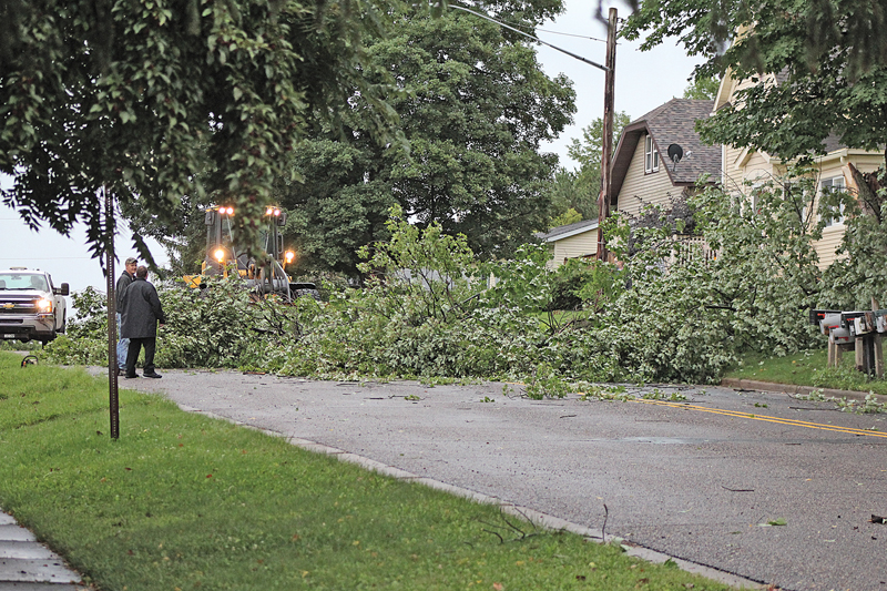 Tree Down on Elm Street
