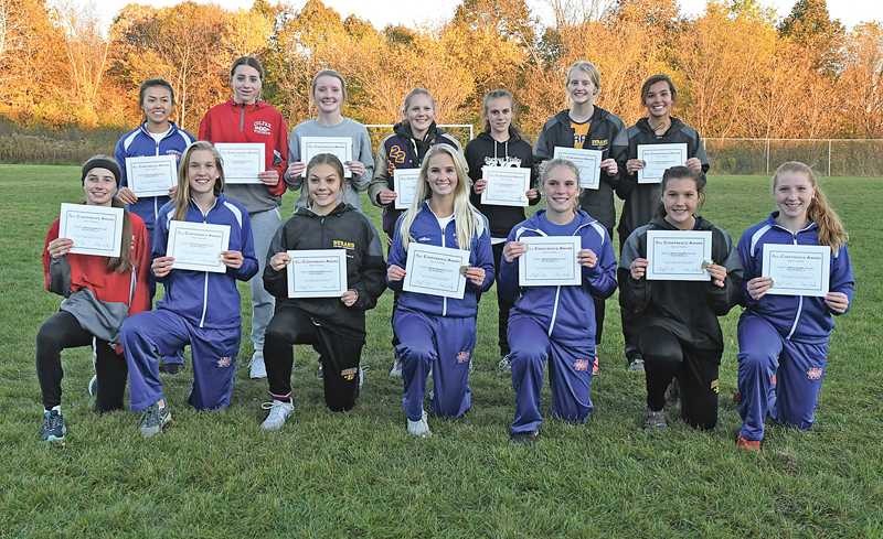 2019 DSC girls All Conference Cross Country
