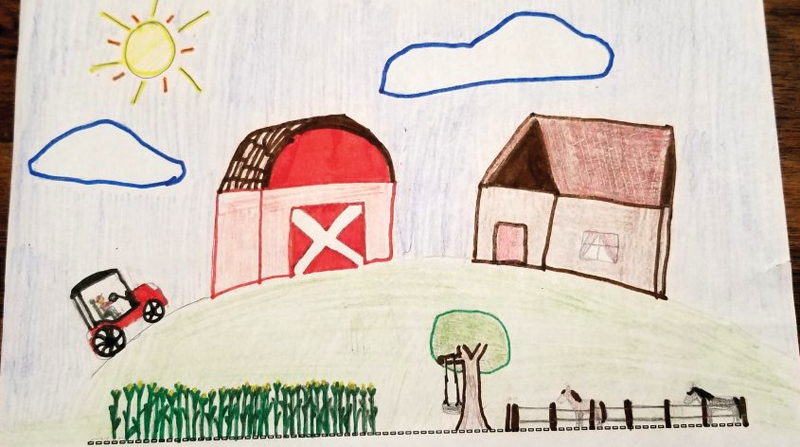 Leah's Ag in the Classroom drawing