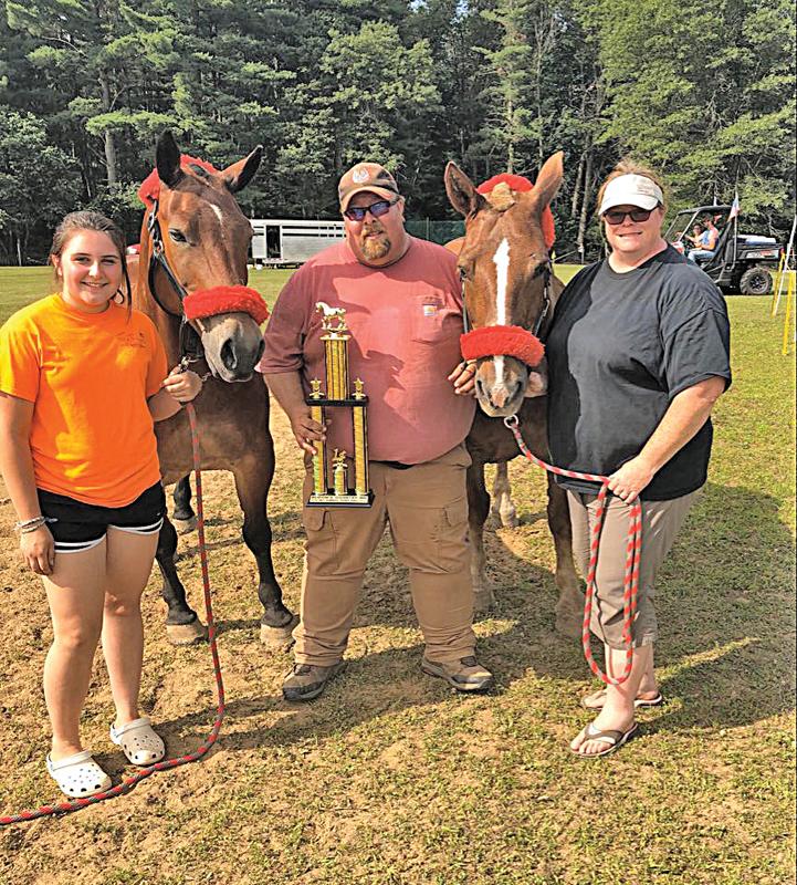 Soppa family with horses