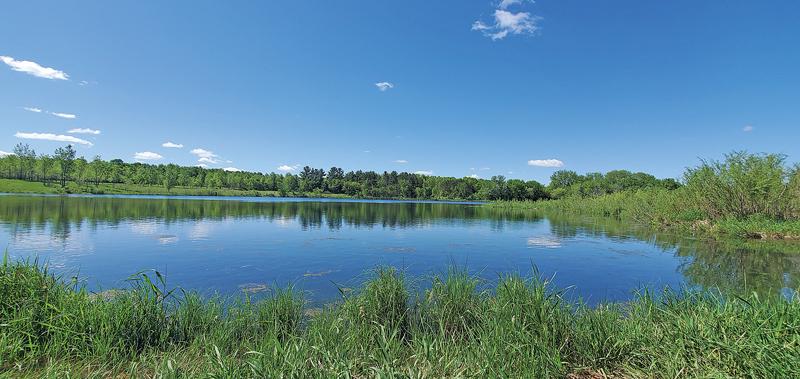 Ferry_Pond