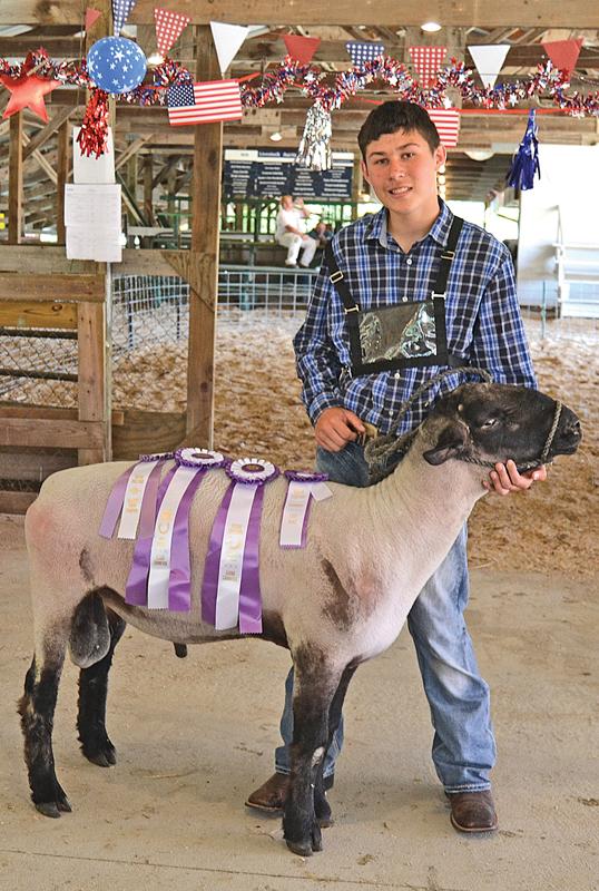 Colfax Fair dairy sheep Blake Sikora