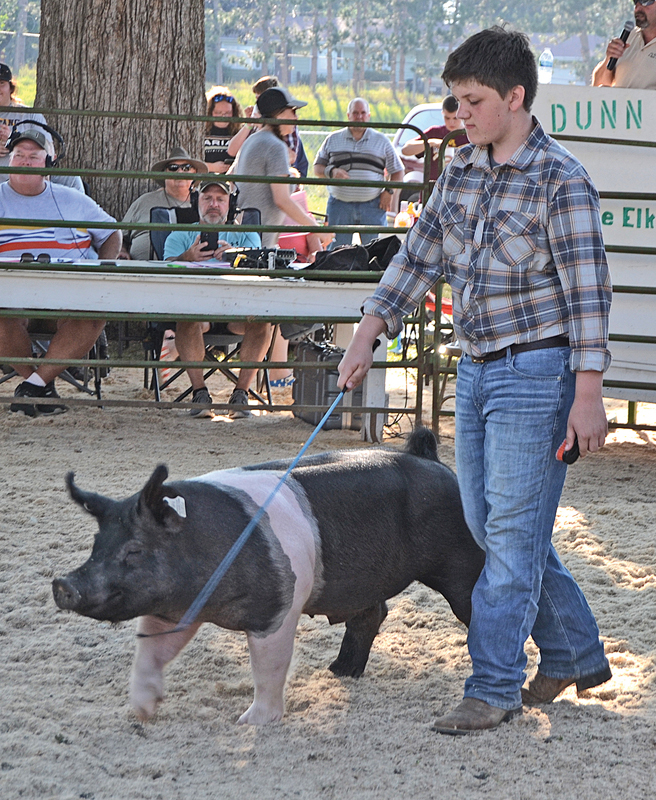 GRAND CHAMPION SWINE — Nate Edwards of Colfax, a member of the Wisconsin Show Pig Association, won Grand Champion market barrow with his crossbred pig at the Dunn County Fair. Nate is the son of Dave and Tina Edwards. He sold his pig at the meat animal auction at the fair on July 24 for $9.50 per pound to Synergy Cooperative. His hog weighed in at 271 pounds. Maximum paid weight for swine is 300 pounds. —photo by LeAnn R. Ralph