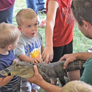 MONTY'S TRAVELING REPTILE SHOW — Glenwood City native Brian Teigen brought several of his reptiles to share with the audience at the St. Croix County Fair on Friday. These little guys were thrilled to be able to touch a live alligator. —photo by Carole Schurtz