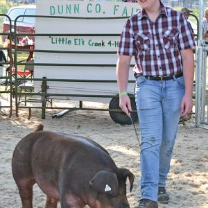 $43 PER POUND — Brian Styer, a member of the Willing Workers 4-H Club, sold his purebred market barrow for $43 per pound to Midwest Nutrition at the Dunn County Fair meat animal auction July 24. —photo by LeAnn R. Ralph